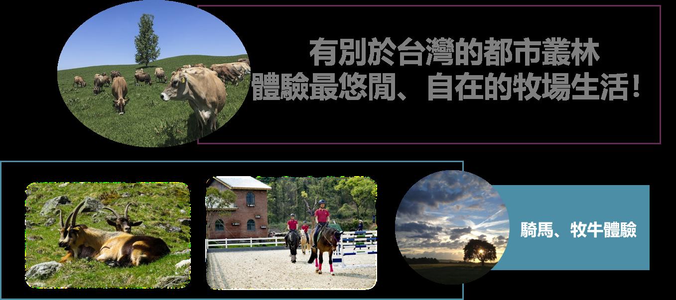 加拿大遊學團有分兩團,其中一個是森活牧場體驗團